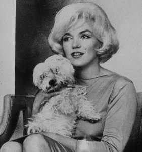 Marylin-Monroe-and-Maf